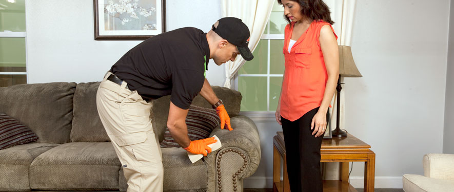 Cape May, NJ carpet upholstery cleaning